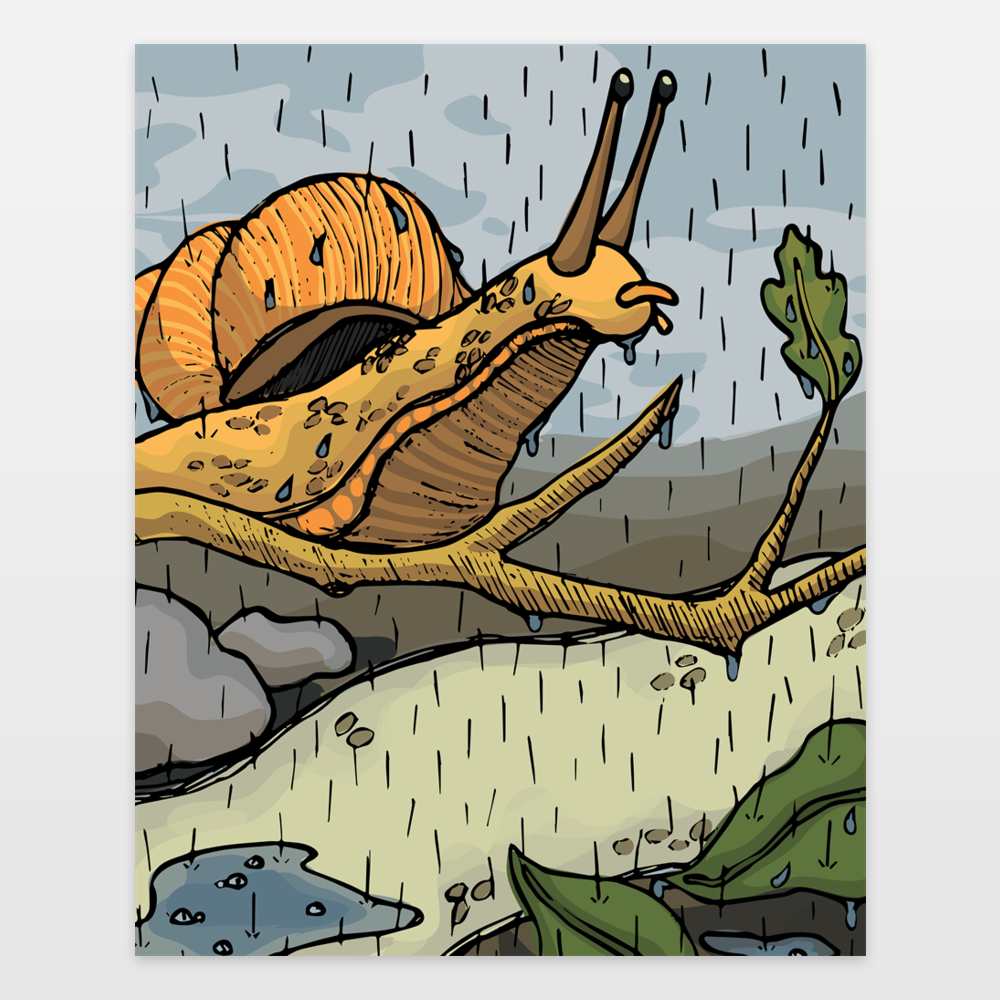 Snail In The Rain - Style 1