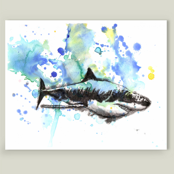 """Great White Shark Art"" by Isabelle Dillard, BoomBoom Prints"