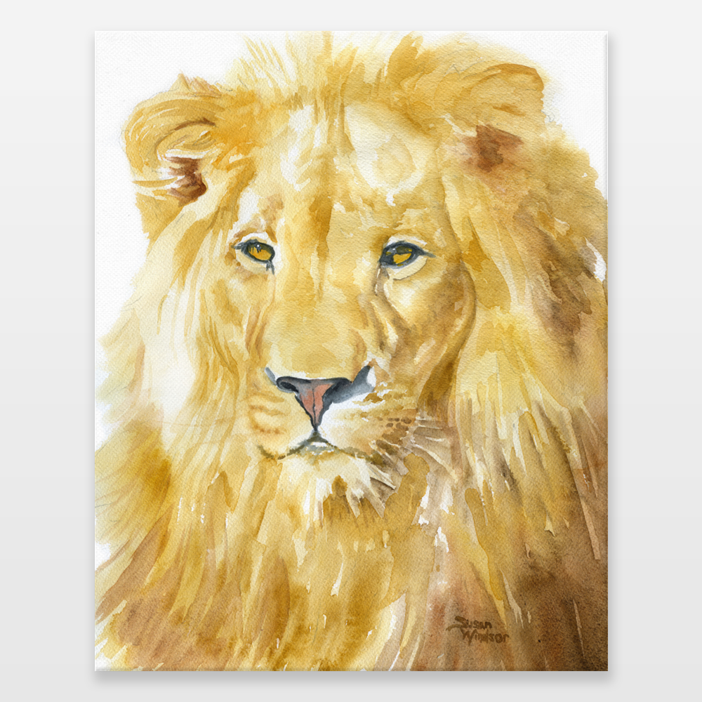 Lion Watercolor Wrapped Canvas Print by susanwindsor on BoomBoomPrints