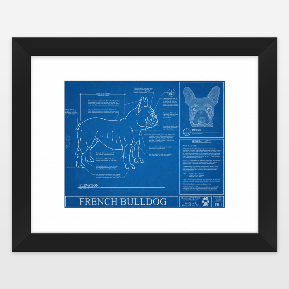 French bulldog blueprint framed art print by wetnosewigglybutts on french bulldog blueprint framed art print by wetnosewigglybutts on boomboomprints malvernweather Image collections
